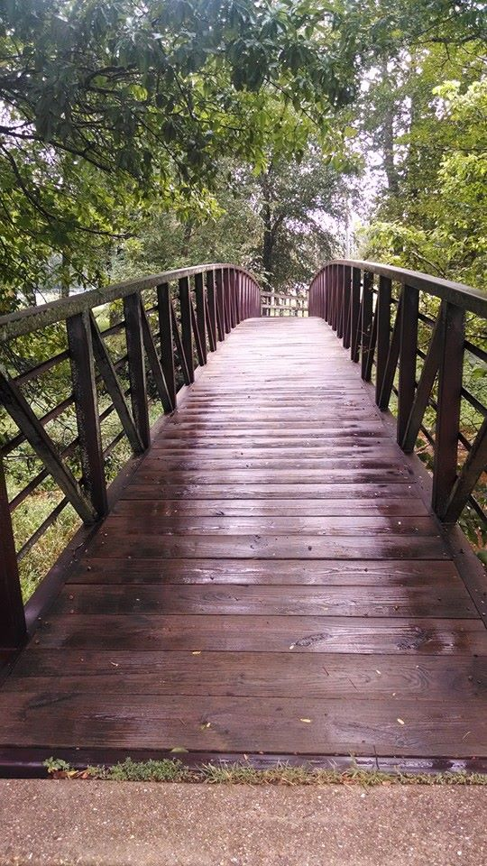 the bridge at the end of my run
