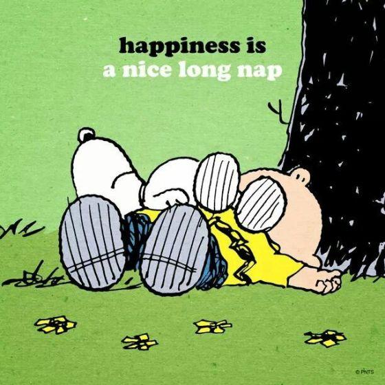 nice long nap