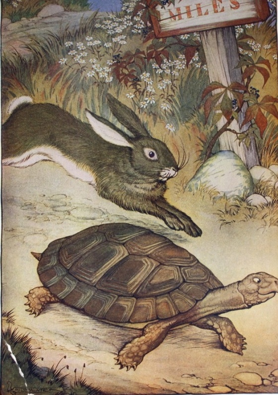 The tortouise and the Hare